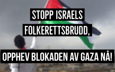 GAZA TWITTER