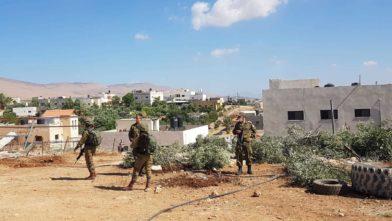 Landbrukseiendommer blir ødelagt i Altwaneh-området i Hebron.
