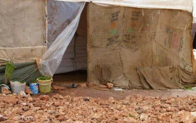 Telt syria