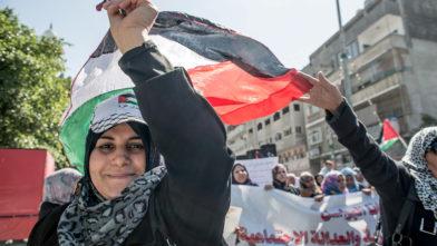 Gaza 2013 8850