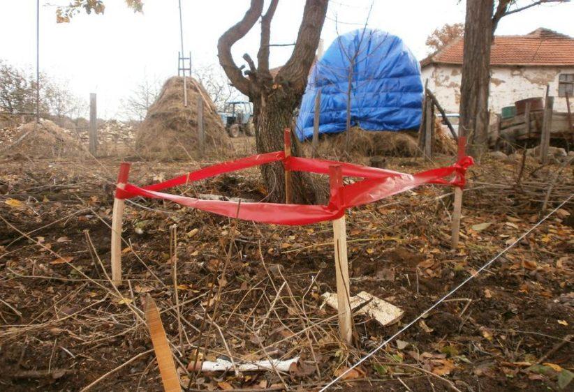 Humanitaer nedrustning i Serbia inter img 925x632