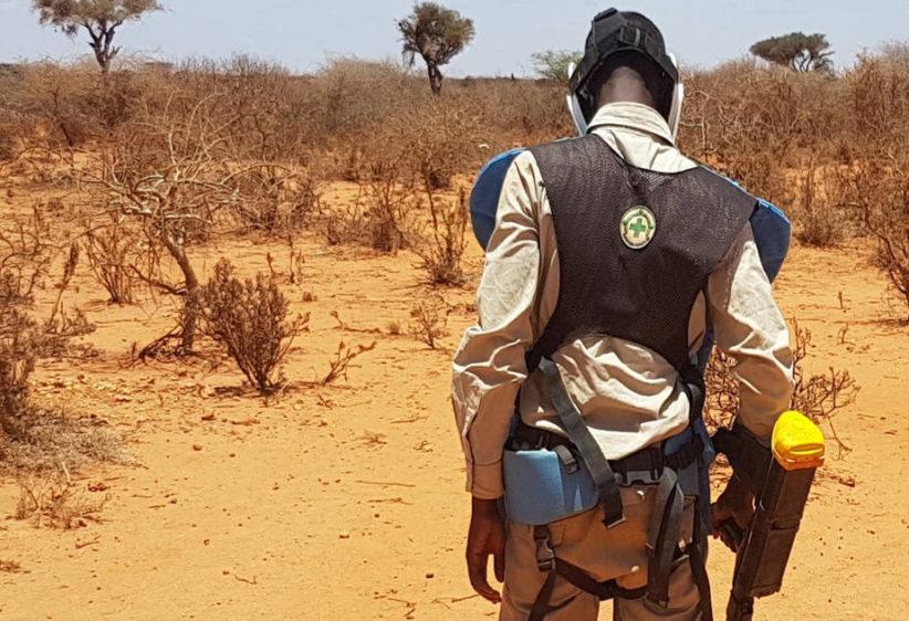 Humanitarian Disarmament in Somalia inter img 925x632